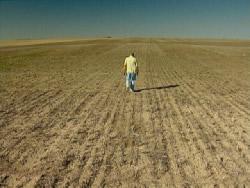 risque climatique agricole : la sécheresse